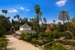 W Seville Alcazar istni Ogródy Hiszpania obraz royalty free