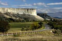 Wąska asfaltowa droga w malowniczym bloomin Zdjęcie Stock