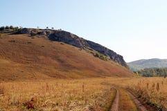 Wąska droga w polu Zdjęcia Royalty Free