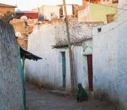 Wąski alleyway antyczny miasto Jugol Harar Etiopia Zdjęcie Royalty Free
