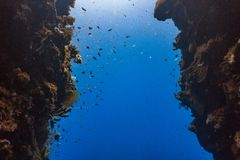 Wąski podwodny szczelinowy zdjęcia royalty free