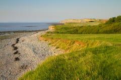 W Somerset Kilve plaża Anglia Zdjęcie Stock