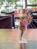 W szklanej wazie purpurowi kwiaty Fotografia Royalty Free