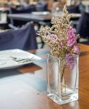 W szklanej wazie purpurowi kwiaty Zdjęcie Royalty Free