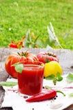 W szkle pomidorowy Kumberland obrazy royalty free