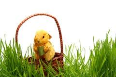 W trawie wielkanocny królik fotografia royalty free