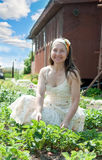 W truskawkowej roślinie dojrzała kobieta Fotografia Royalty Free