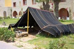 W Tunezja tradycyjny namiot Zdjęcie Stock