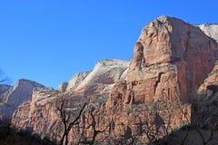 W Utah Zion Park Narodowy, USA Zdjęcia Royalty Free