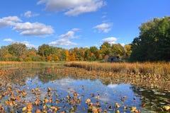 W W 骑士自然保护区 库存照片