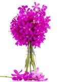 W wazie orchidea purpurowy bukiet. Obrazy Royalty Free