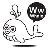 W Whale cartoon and alphabet for children to learning and colori. W Whale animal cartoon and alphabet for children to learning and coloring page vector Royalty Free Illustration