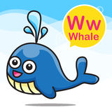 W Whale color cartoon and alphabet for children to learning vect. W Whale animal cartoon and alphabet for children to learning vector illustration eps10 Stock Illustration