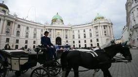 W Wiedeń Fracht zdjęcie wideo