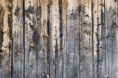 w wieku drewna Fotografia Stock