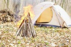 W wiosna lesie namiot z ogieniem a Zdjęcia Royalty Free