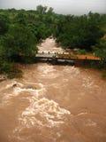 W wsi zalewająca rzeka Zdjęcia Stock