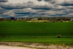 W wsi zielony pole Fotografia Stock
