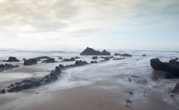 W wybrzeżu Fotografia Royalty Free