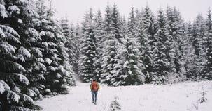 W zadziwiającym śnieżnym lesie z dużej choinki turystyczny podróżnym samotnie wyposażającym on chodzi wolno przez śnieżnego zbiory