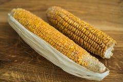 W zeszłym roku żniwo kukurudza po 6 miesięcy przechować Obraz Stock