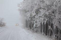 W zima lasowa droga Zdjęcie Stock