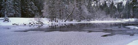 W Zima Merced Rzeka, Fotografia Stock