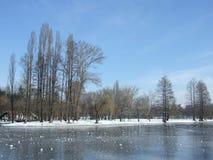 W zima tytanu Jezioro Obrazy Royalty Free