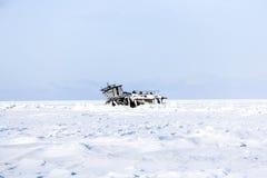 W zimie Zdjęcia Stock