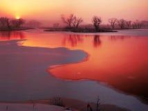 W zimie jezioro obraz royalty free