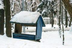 W zimie las na drzewie wiesza ptasiego dozownika Zdjęcia Royalty Free