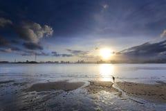 W zmroku żeński rybaka kolekcjonowanie łuska przy plażą Zdjęcia Royalty Free