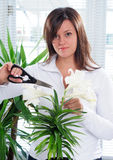 W0oman And Plant Stock Photography