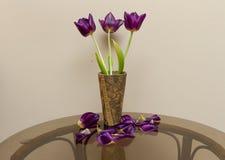 Wałkoni się tulipany Zdjęcia Stock