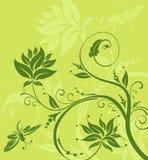 ważka tła kwiat ilustracja wektor