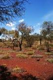 wa национального парка karijini Стоковое Изображение RF
