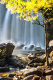 在热带雨林风景的晴天与流动的蓝色wa 免版税库存照片