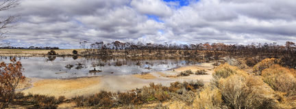 WA Firewood Lake Water. Shallow lake of rain water after bushfires in Western australia. Eucalyptus forest heavily damaged in devastating fires leaving burnt stock photo