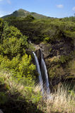 Wa'ipo'o Falls on Kauai. Twin torrents of water fall over the steep cliffs of Wa'ipo'o Falls on Kauai, Hawaii.  Grassy cliff frames bottom front of picture and Royalty Free Stock Image