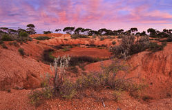 WA Red Outback Panorama Stock Photo