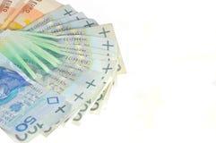 Waaier van geld Stock Afbeeldingen