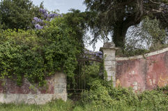 Waal of ruin church Stock Image