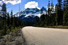 Waar leidt de weg? Stock Afbeeldingen