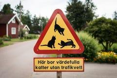 Waarschuwingsverkeersteken: zorgvuldig ben, katten op de weg Stock Fotografie