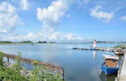 Waase, Ummanz海岛,波罗的海,德国 免版税库存图片