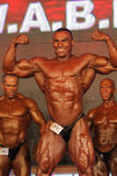WABBA bodybuilding world championship Royalty Free Stock Photo