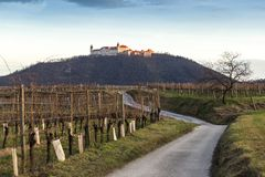 Wachau Abbey of Goettweig with surrounding vineyard, Austria. Wachau Abbey of Goettweig with surrounding vineyard, Lower Austria royalty free stock images