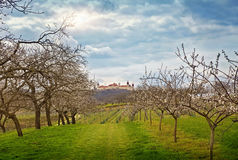 Wachau-Landschaft stockbilder