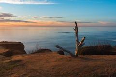 Wachposten über Sonnenuntergang-Klippen Stockbilder
