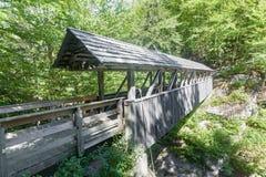 Wachposten-Kiefern-Brücke Lizenzfreies Stockfoto